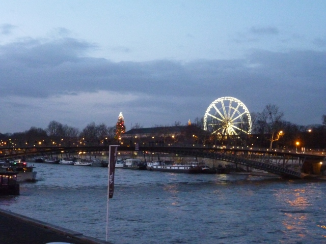 Christmas illuminations in Paris by Le Seine